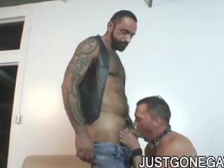 naughty tattooed bear tom colt copulates ally